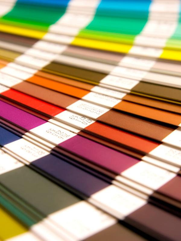 What About a Color Palette?